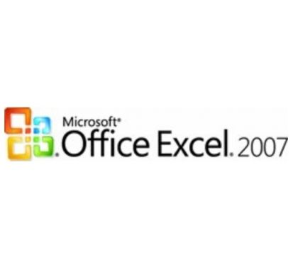 MICROSOFT Excel - License & Software Assurance 065-03345